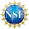 nsf1 logo