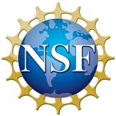 nsf1 logotrans